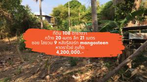 ขายที่ดินภูเก็ต ป่าตอง : [24 กุมภา 2564] ที่ดิน 108 ตารางวา ซอยไสยวน 9 หาดราไวย์ ซอย แมงโก้สทีน เพียง 4,200,000.-